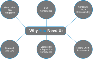 Why You Need Us Diagram (1)